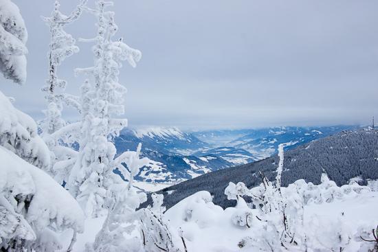 Idyllisch Winterlandschap
